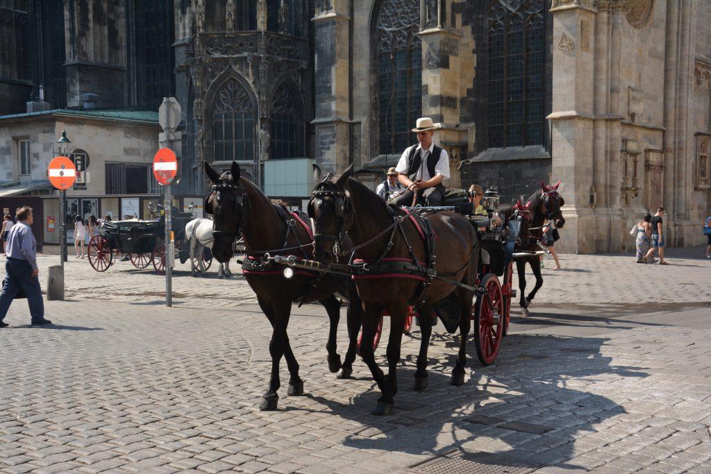 Viyana da ulaşım araçlarından biri