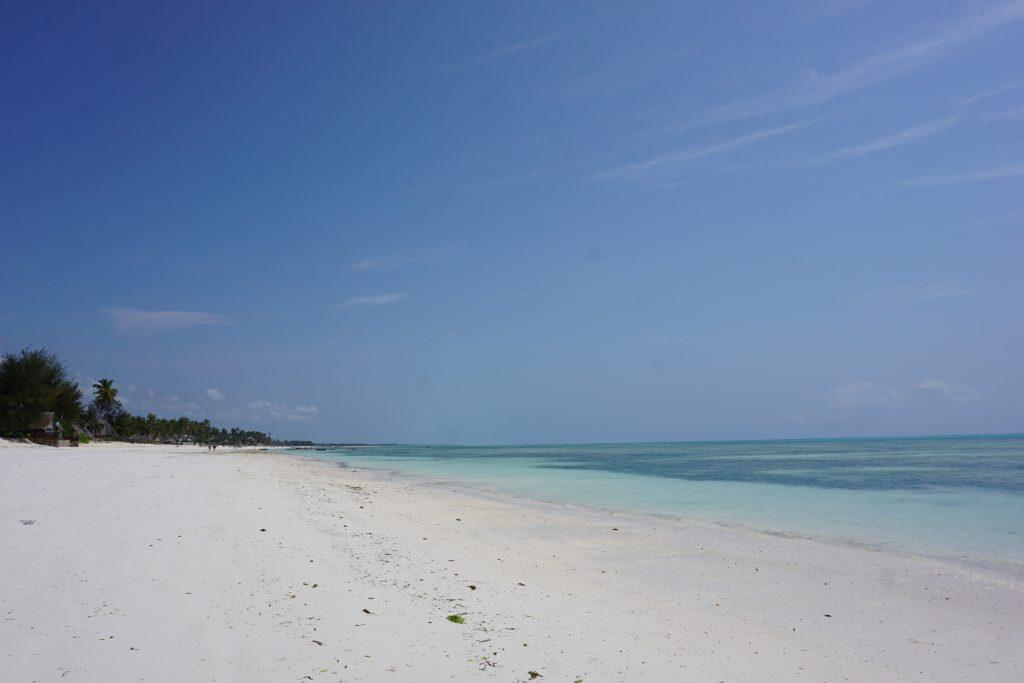 Afrika'da olmak - Zanzibar adası