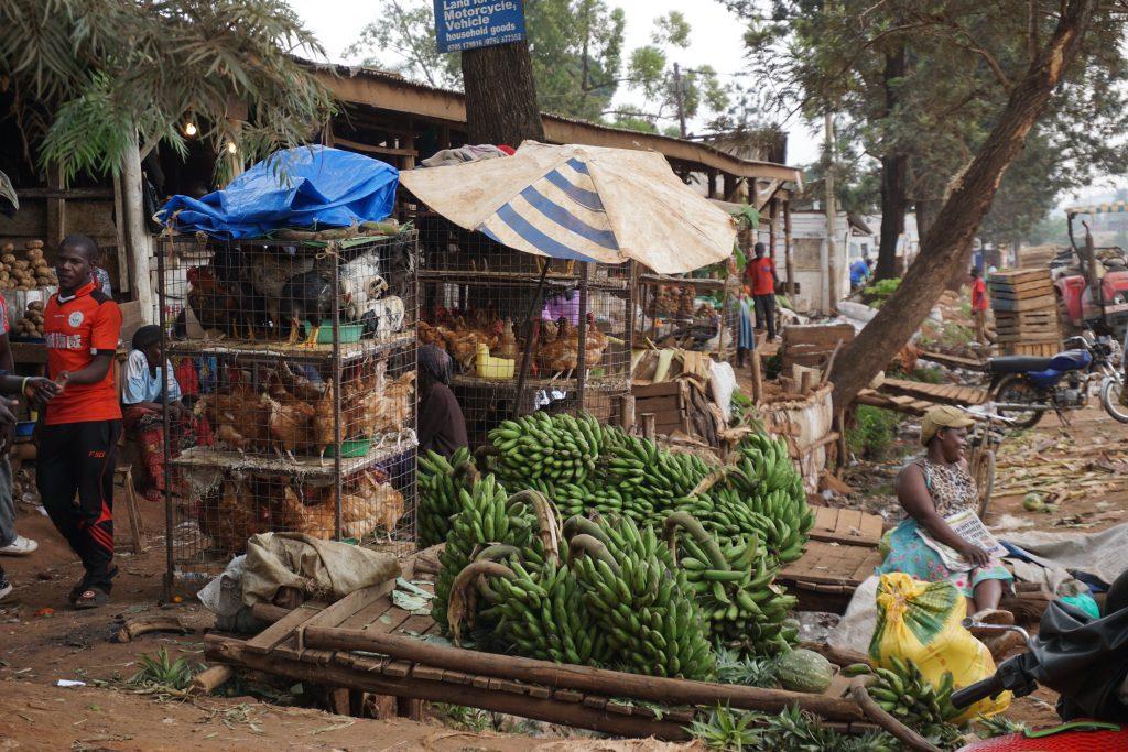 Afrika'da dikkat edilmesi gerekenler - Ruanda'da yerel bir açık market
