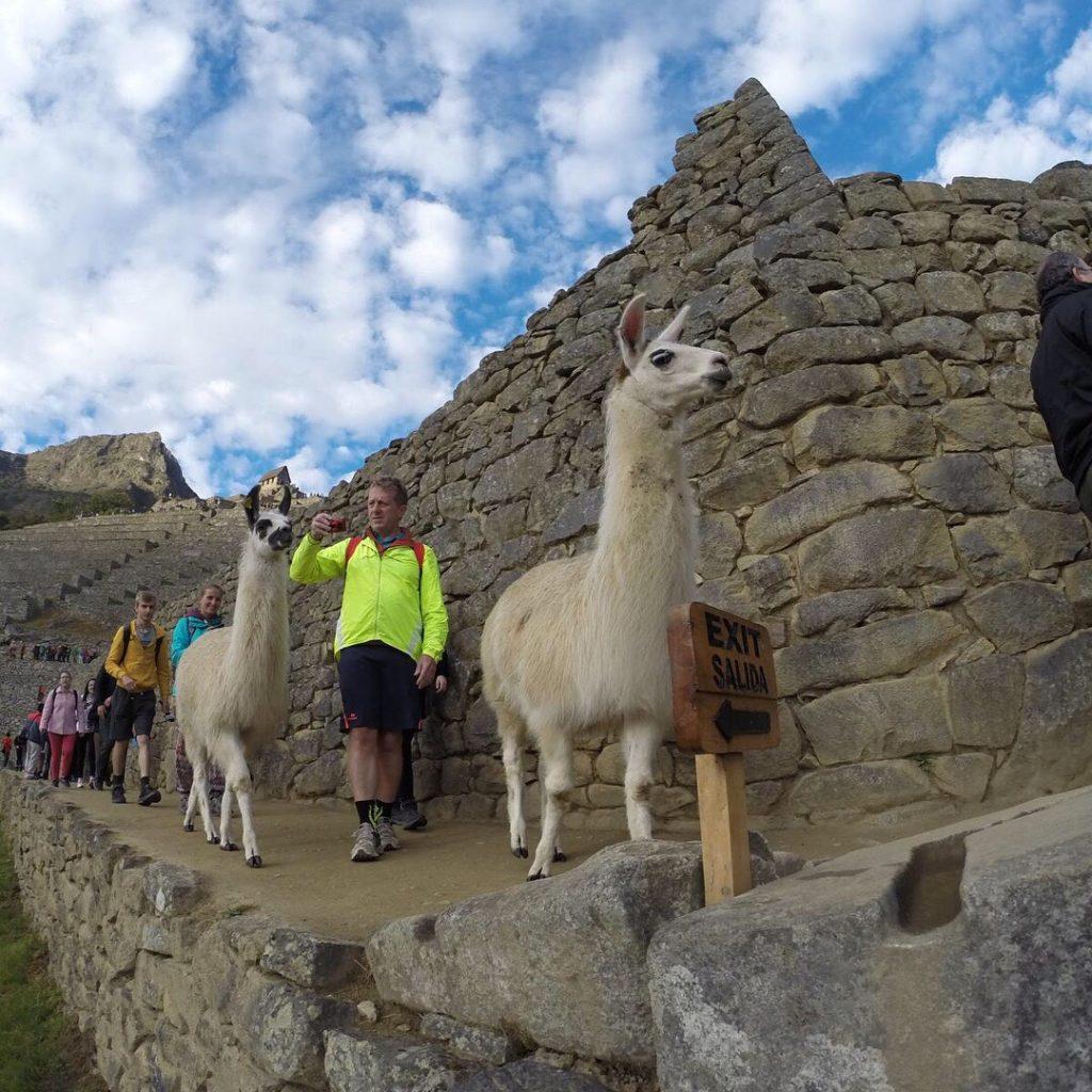 Hayallerimde bir yol Güney Amerika